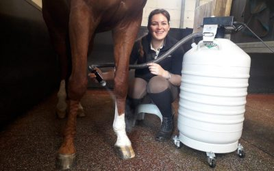 Alternative Cryotherapy: the Case of Equine Treatment