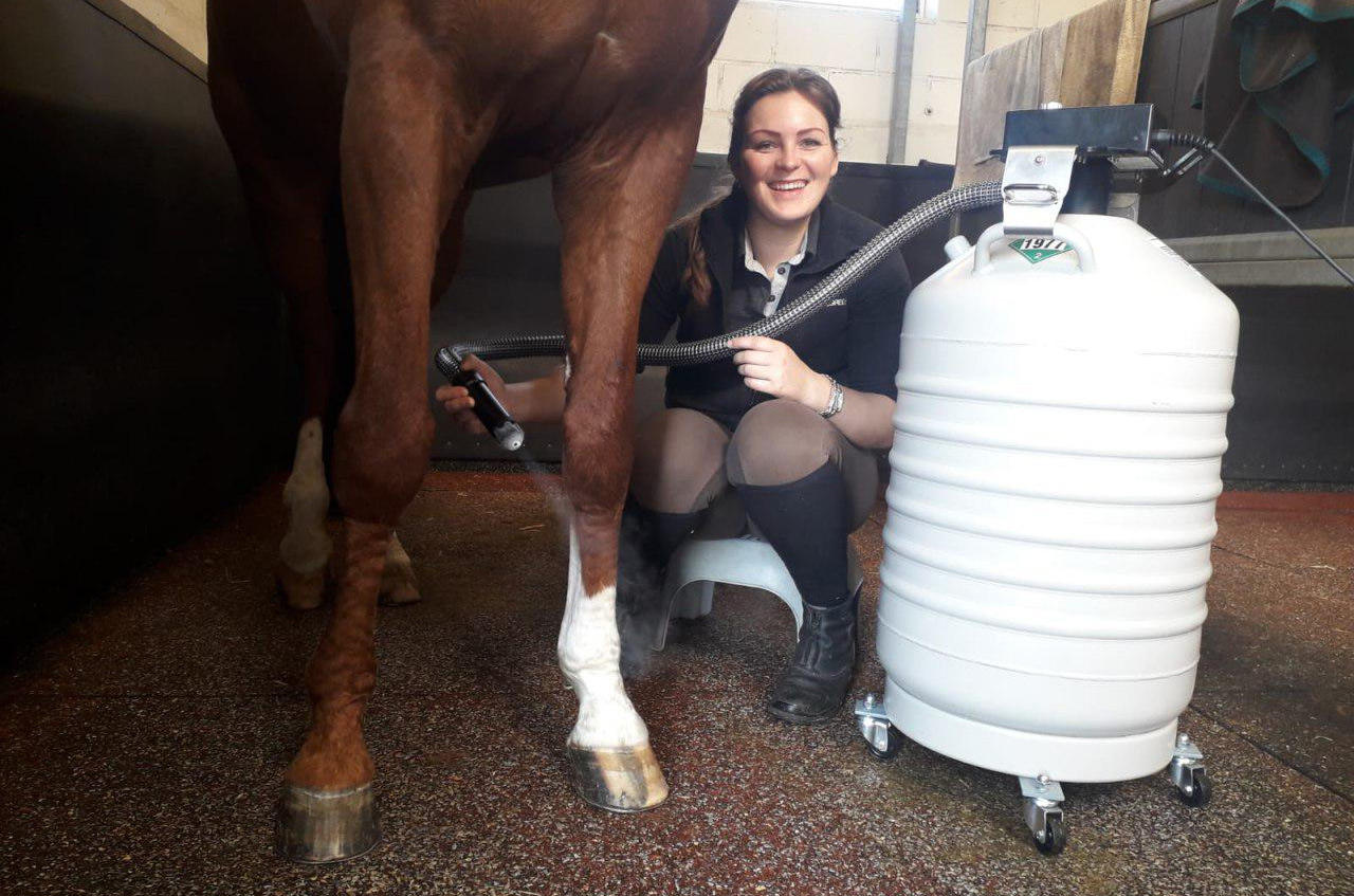 Cryomed's customer from Belgium  uses Cryofan CF-04 for horses